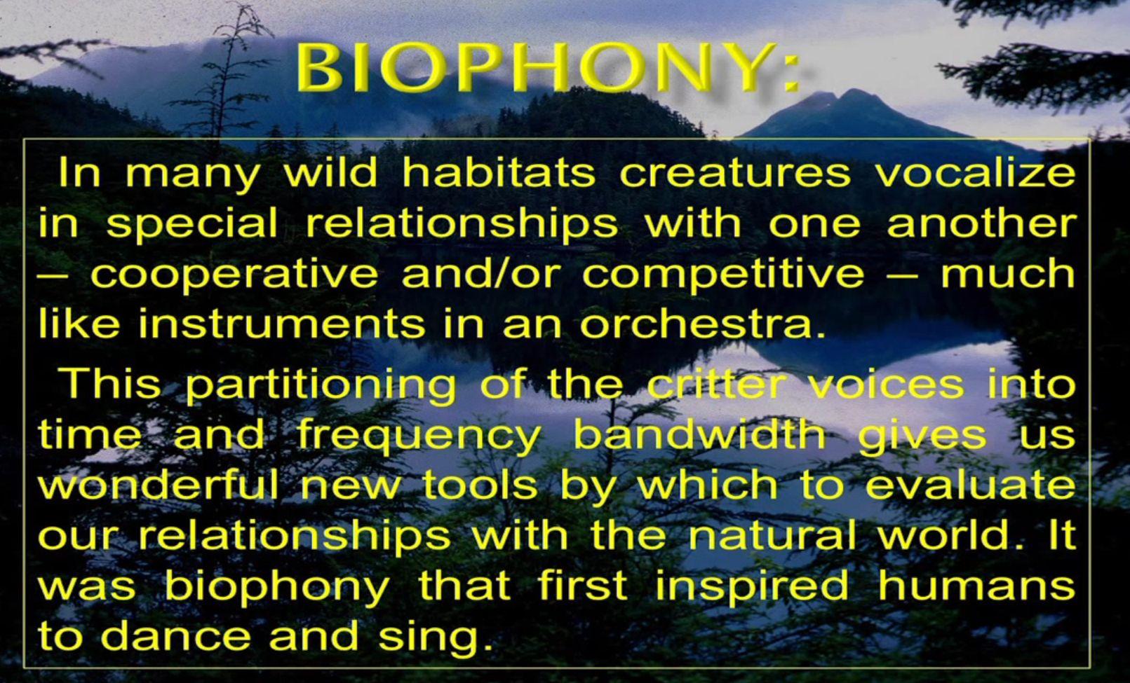 biophony