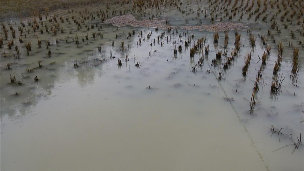 zhanjiajie_village (7)